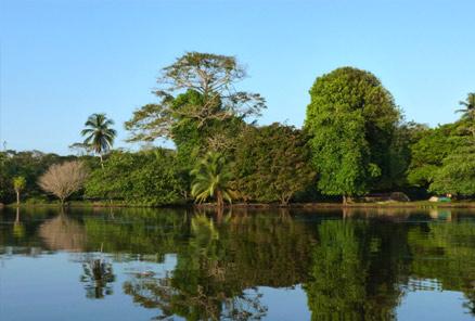 Région Caraïbe Nord